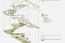 Landscape: Diagrams, patterns