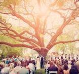 ✴ Wedding Day ✴