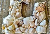sea Shells crafts / by Nina Smith