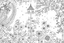 Jardin secret /Secret garden / Jardin secret