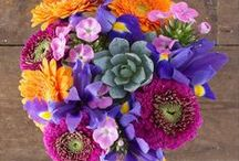 Vibrant Summer / Our gorgeous Vibrant Summer bouquet reminds us of dazzling summer sunshine!  Here's our inspiration for all things bright and beautiful.