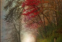 Fog And Fantasy / All comments belong to previous pinner unless otherwise stated / by Dolores Marlena