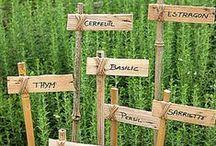 DIY spécial Jardin