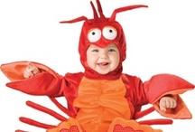 Lobster Cuteness