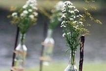 Outdoor Wedding / Outdoor Wedding