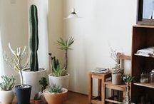 Casa e decoração / Casa e Lazer