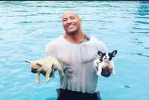 Celebrity Pets / A-Listers are just like us - they love their pets! See many Celebrities consider their Adorable Pets their furbabies!