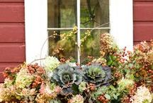 Fall Garden Ideas / Stunning autumnal garden ideas to set off your deck in style.