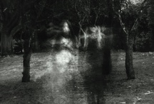 Transparent Apparitions / Invisble Visibility