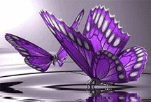 Purple is my favorite!