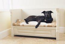 Dogbed & stuff