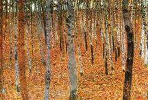 The Arrival of Spring KUBV / het bos door de bomen