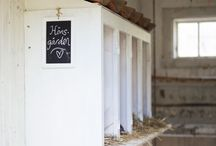 hen | house / Idéer till ett fint hönshus och en fin hönsgård för lyckliga höns / Dreams about happy hens picking around in the garden