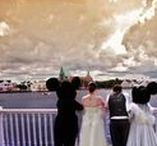 Everything Disney Wedding** / Best Ideas to Celebrating your Dream Wedding at Disney World