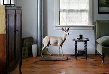 Robinson Interior / by BLdw