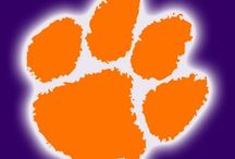 Clemson Tigers / by Wilma Humphries