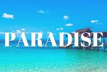 Paradise Around The World / Let's go to paradise and never come back...