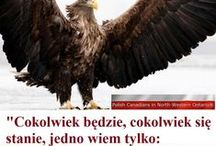 Polska,Poland / Krajobrazy ,zamki pałace,ogrody ,zwierzęta,i ludzie  Polskie. .Landscapes, castles palaces, gardens, animals, and humans Polish.