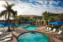 The Spa at PGA National / We are a full-service spa and salon presenting more than 100 ways to indulge.
