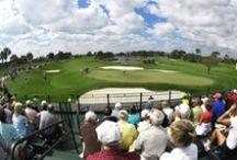 Captured Golf Moments  / The Honda Classic
