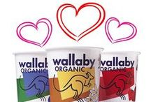Giveaways! / Check out these great Wallaby Yogurt giveaway packages!