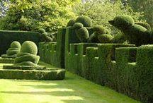 Art & Jardin Buis