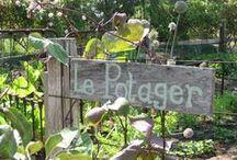 Art & Jardin Potager