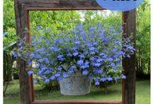 Art & Jardin  Trucs&Astuces / Coté cour - Cote jardin ... Divers conseils.