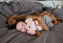 Fur Babies / Animals we love