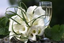 Flowers, gardens & much more.. / Just fresh...your mood with flowers