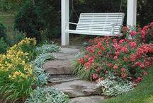 zahrada / garden