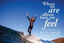 Blue mind / Blue Mind: The Surprising Science That Shows How Being Near, In, On, or Under Water Can Make You Happier, Healthier, More Connected, and Better at What You Do