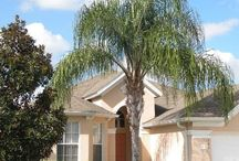 Villa in Florida / Anything and everything to do with our villa for rent in Florida.   www.tylersfloridavilla.co.uk Facebook page: TYLERS FLORIDA VILLA