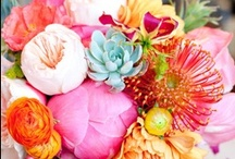 fancy flowers / by Debbie Oddi