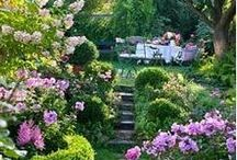 Gardening / by May England