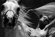The Spirit  / by Warrior Jewels