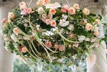 Flowers: Installations / The antithesis to posies in jam jars, here we celebrate the architectural, sculptural, airborne, artistic and manipulated of arrangements: from corsages, wreaths and urns to larger than life installations.