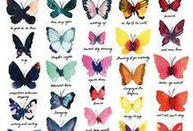 ❀ » F A U N A ... motýle ∵ húsenice ∵ / ...*Motýle (lat. Lepidoptera Linnaeus 1758 ) je rad hmyzu. Odhadujeme, že motýľov bolo dosiaľ opísaných a pomenovaných vyše 180 000 druhov (cca. 127 čeľadí). Rôznych foriem je nepredstaviteľné množstvo. Z tohto veľkého množstva sa udáva z územia Slovenska viac ako 3500 druhov...*Húsenica alebo larva motýľa je nedospelé vývojové štádium motýľov, ktoré nemá vonkajšie znaky imága. Posledný instar húsenice sa premieňa u motýľa po poslednom zvlečení kutikuly na kuklu....Caterpillars = húsenica, ... / by Aňa