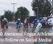 Vegans / Meet fellow vegans