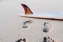 •when in doubt paddle out•