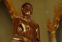 Thailand [2010] / by Chris Mudde
