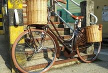 BC bissa / Biciclette fixed single speed Bike cycle