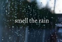 rain - petrichor ☂ / #storyafterrain ☂