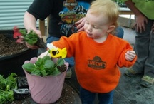 Gardening with Children / Ideas and DIY's to make gardening kid friendly and fun!