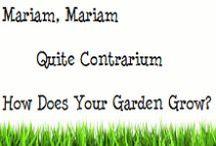 Mariam Mariam Quite Contrarium / How does your garden grow?