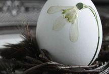 Lente Pasen