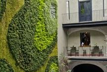 Green walls / Train trees or vines as espalier against a wall, hang containers on a fence, or plant succulents in frames of any size. Green wall ideas here!