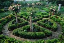 Circles and Curves / Do you love circles and curving lines in gardens? We do too.