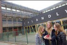 The Urban Professional Development School of Amsterdam / by NOA-Amsterdam