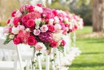 Weddings / Wedding related pins ❤️